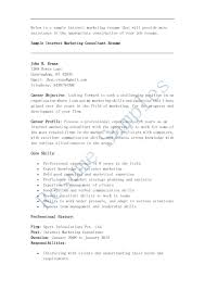 online marketing resume sample resume samples internet marketing consultant marketer free blue sky resumes online marketing resume sample