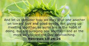 23 Bible Verses About Community Dailyversesnet
