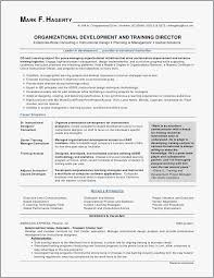 Financial Resume Examples Gorgeous Business Analyst Resume Samples Format Business Analyst Resume