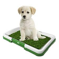 Artificial Grass Bathroom Mat for Puppies and Small ... - Amazon.com
