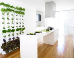 Vertical Kitchen Garden Indoor Kitchen Gardens Photo Album Patiofurn Home Design Ideas