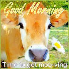 Good Morning Moving On Quotes Best Of Good Morning Time To Get Moving Pictures Photos And Images For