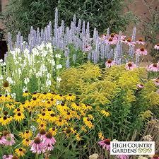 country gardens. Modren Country Summer Dreams PrePlanned Garden Throughout Country Gardens I