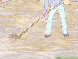 image titled remove mastic step 9