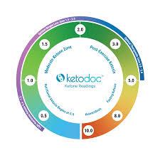 What Do My Readings Mean Ketodoc Ketone Blood