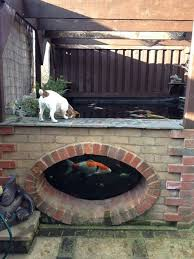 construction that looks vintagely wonderful above ground koi pond with window 27 min