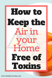 Image result for air toxins in home
