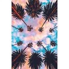Best TumblrInstagram pictures Palm trees