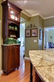 Austin Kitchen Remodeling Exterior Painting