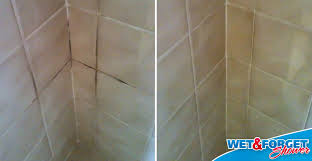 grout cleaning made easy with wet forget shower