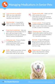 Pet Poster Tips For Managing Your Pet's Medication Poster Info Graphic 20