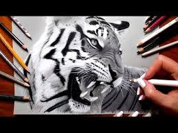 tiger face growling drawing.  Drawing Pencil Drawing Roaring Tiger   Speed Draw  Jasmina Susak Intended Face Growling Drawing G