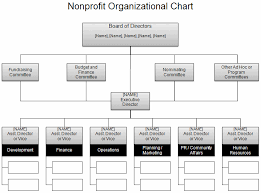 Clinic Organizational Chart Template Download The Nonprofit Org Chart From Vertex42 Com