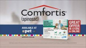 what is comfortis. Fine What Comfortis And Ivermectin Joints Vessels Talk With A Vet  Mechanism Of Action Puppy Prefers On Sale In Order To Save Poor Dogu0027s Life  Intended What Is Comfortis