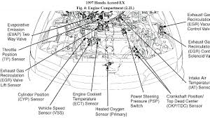 1998 honda accord engine diagram 1996 honda accord wiring schematic 1998 honda accord engine diagram 1998 honda accord engine diagram 1996 honda accord wiring schematic civic radio diagram stereo ford