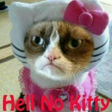grumpy cat quotes frozen. Beautiful Quotes Frozen Grumpy Cat Cat Quotes Frozen With Quotes D