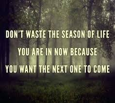 Seasons Of Life Quotes Beauteous Seasons Of Life Quotes Seasons Of Life Quotes Best Waste The Season