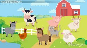 propaganda in farm role