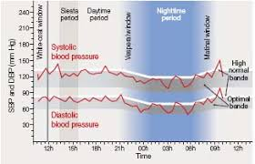 Blood Pressure Variation During Day Chart Ambulatory Blood Pressure Monitoring 24 Hour Blood Pressure