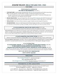 Award Winning Ceo Coo Healthcare Resume By Executive Resume Writer