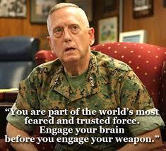 General Mattis Quotes Stunning 48 Best General James Mad Dog Mattis Quotes