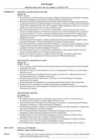Hr Business Partner Resume