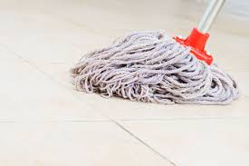 Best Kitchen Floor Mop 6 Common Mop Types And What Theyre Used For