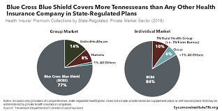 Us health advisors offers a full comprehensive health insurance program that can be tailored for the individual. A Deep Dive Into Health Insurance Coverage In Tennessee