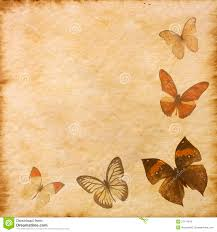 the time of the butterflies essay in the time of the butterflies essay