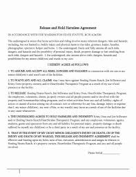 Hold Harmless Agreements Indemnity Agreement Letter Sample Elegant 24 Hold Harmless Agreement 21