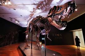 One of largest known T. rex skeletons up for auction at Christie's - Wolf  Daily