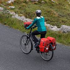 Ortlieb Bike Packer Plus Panniers