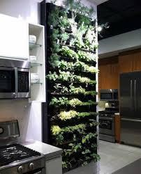 indoor kitchen garden. Modern Kitchen Indoor Herb Garden