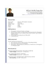 Curriculum Vitae Sample Computer Skills thevictorianparlor co