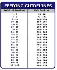 Dog Feeding Chart Dog Feeding Guidelines Goldenacresdogs Com