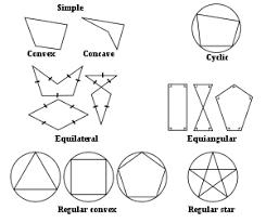 Polygon Wikipedia