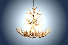 real antler chandelier real antler chandelier for deer antler chandelier real antler mule deer chandelier