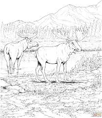 Hunting Coloring Pages For Adults Residence Exploit With Wallpaper