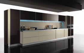 Modern Design Kitchen Cabinets Plush Kitchen Modern Cabinet Doors Pictures  Options Tips Amp