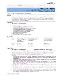 ... Professional Resume Templates Word 13 Template Word Resume Examples  Writing Profile Experience Achievments Career History Fascinating ...