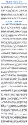 essay on the ldquo importance of hindi language rdquo in hindi