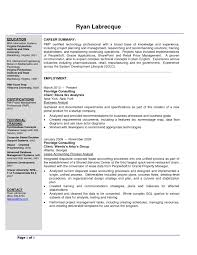 Sample Resume Objectives For Business Analyst Refrence Resume