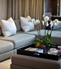 How To Decorate A Coffee Table Tray Coffe Table How To Decorate Coffee Table Tray Decorative On Tables 4