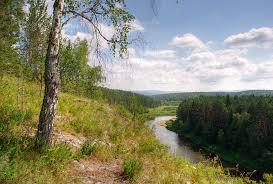 Природа растения и животные Южного Урала Растительный мир Южного Урала