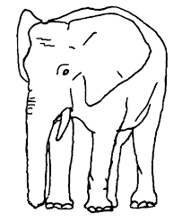 Small Picture African Elephant Coloring Pages African Elephant African