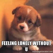 Feeling Lonely Without U - cute puppy | Meme Generator via Relatably.com