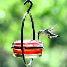 glass bird feeders vintage cage hummingbird