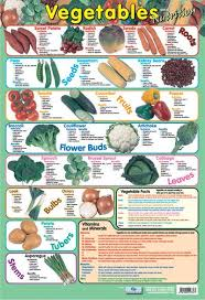 Vitamin Chart For Women Day Poster With Nutritional Guide