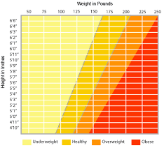 Health Weight Chart A Free Height Weight Chart Download Healthy Weight Charts