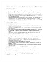 Financial Analyst Resume Summary ...
